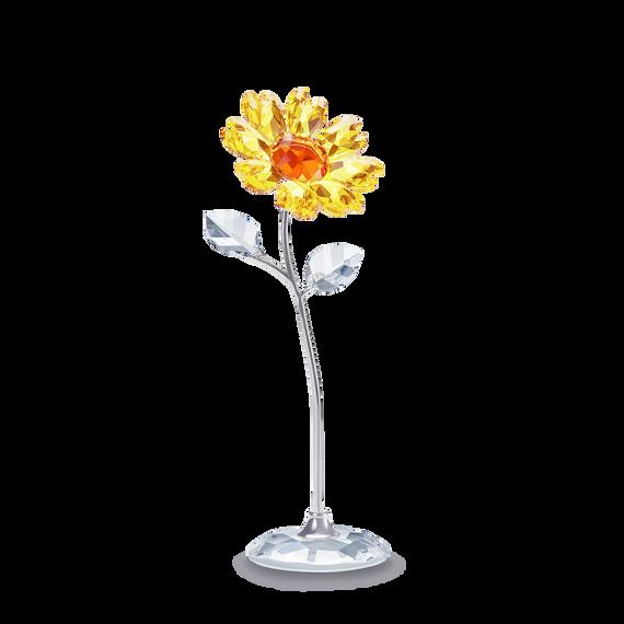 Flower Dream  - Sunflower