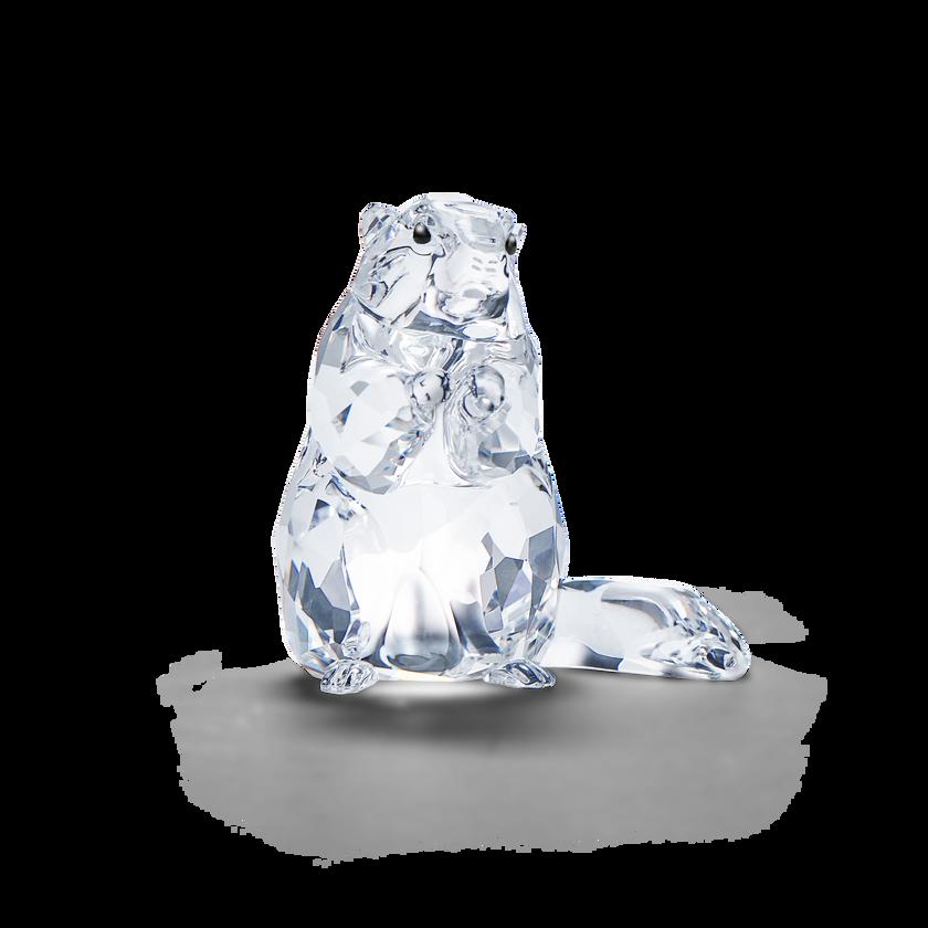 SCS Marmot (Event Piece 2020)