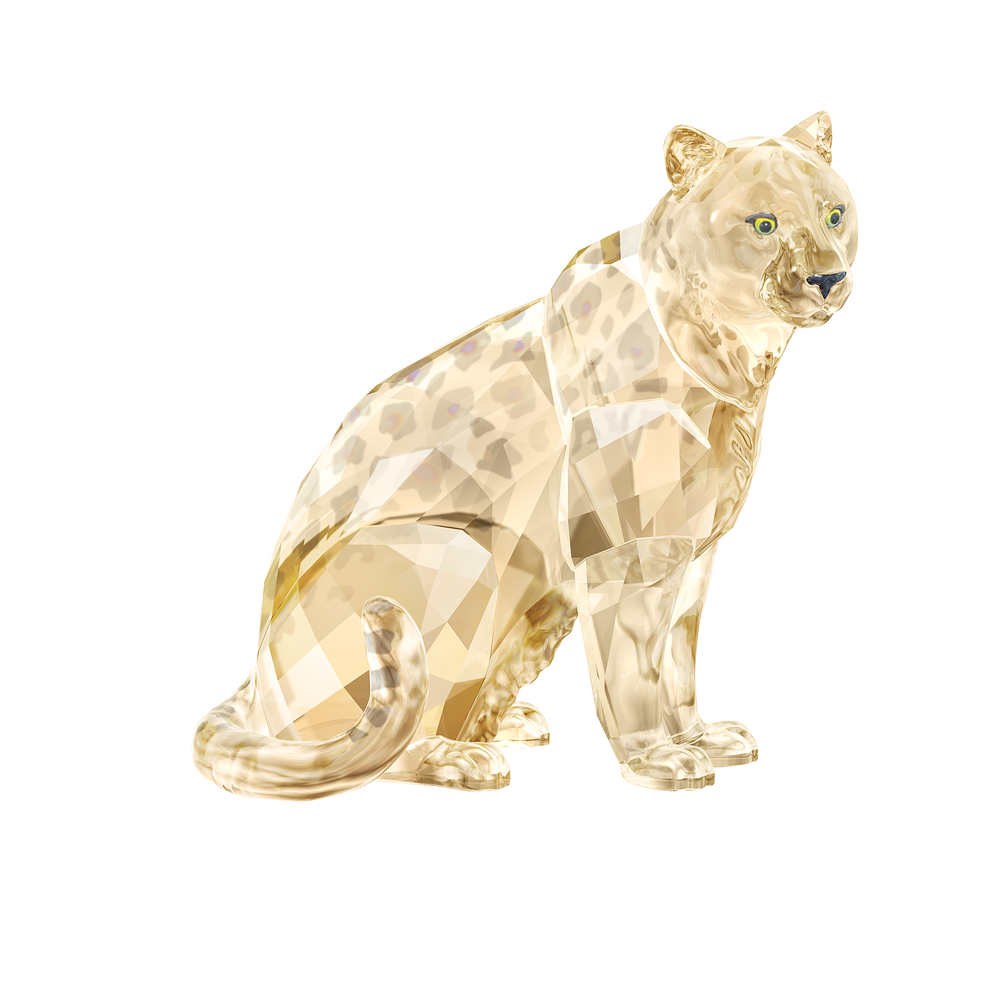 SCS A.E. 2019 Amur Leopard Sofia