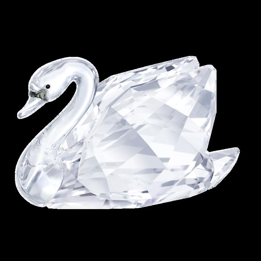 Swan, Small