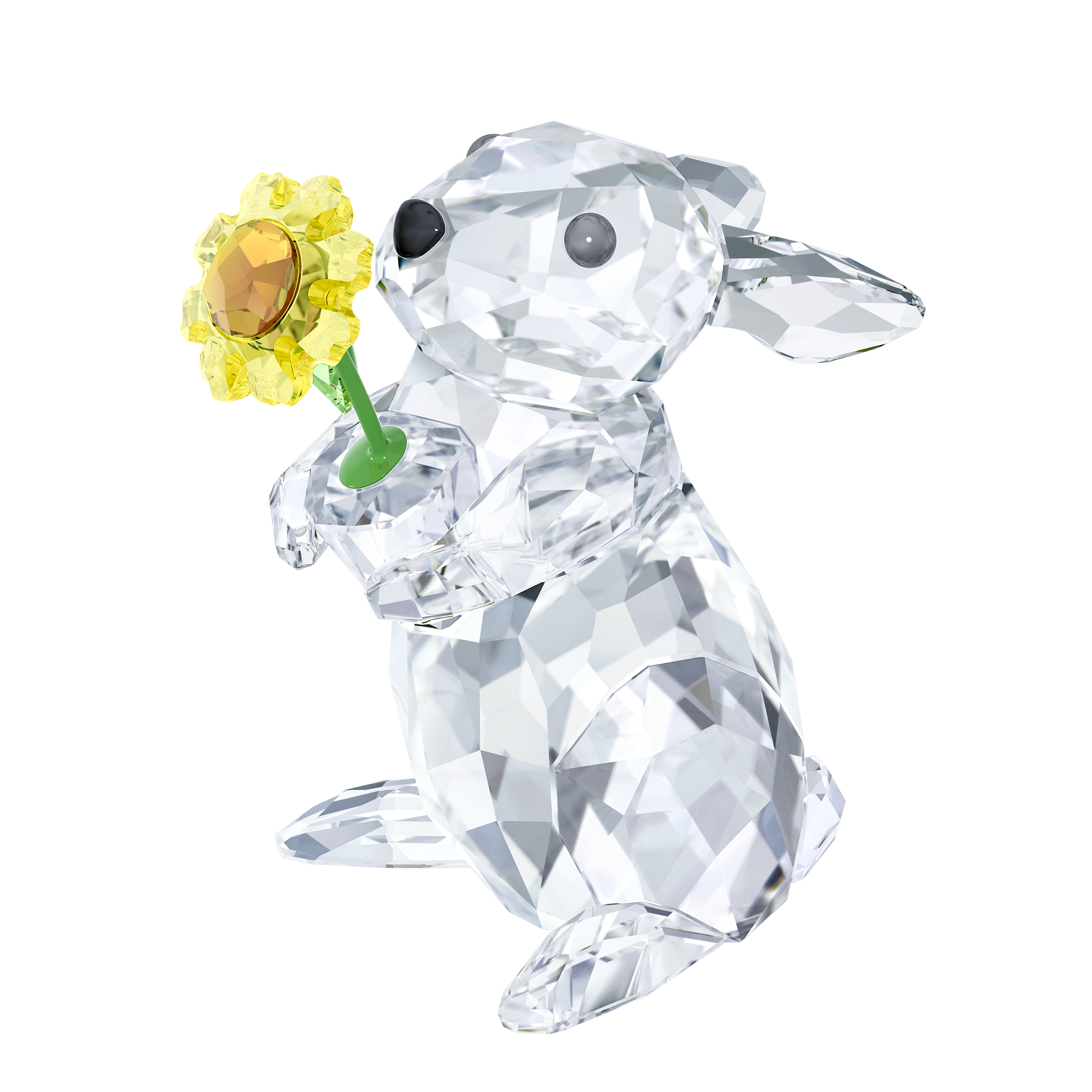 Rabbit with Sunflower